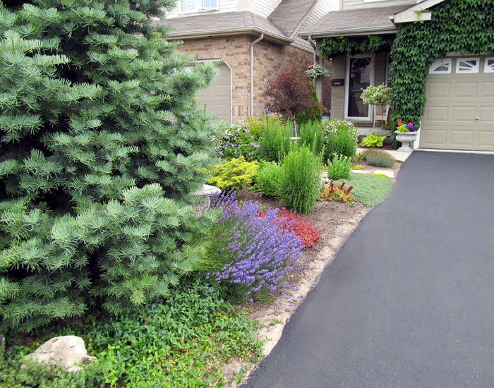 Suburban Backyard Design : Suburban  Garden design  Landscape Design service in Guelph